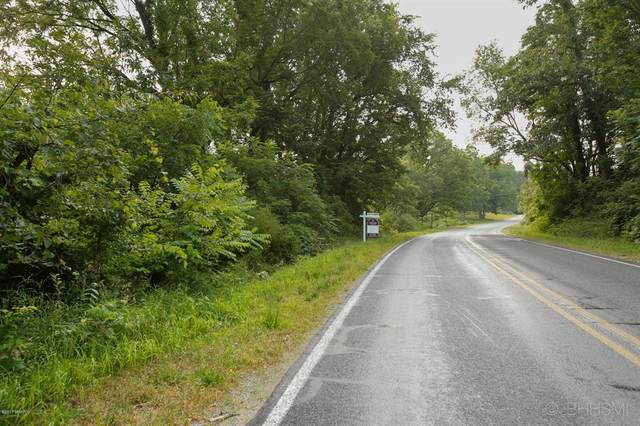 667 Pierce Road, Gun Plain Twp, MI 49080 (MLS #66021010612) :: The John Wentworth Group