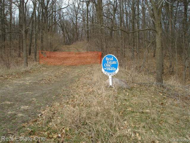 10409 Timberhill, Manchester Twp, MI 48158 (#2210022640) :: Real Estate For A CAUSE