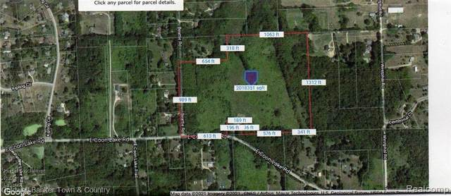 V/L Coon Lake Road, Genoa Twp, MI 48843 (#2210022764) :: The Merrie Johnson Team