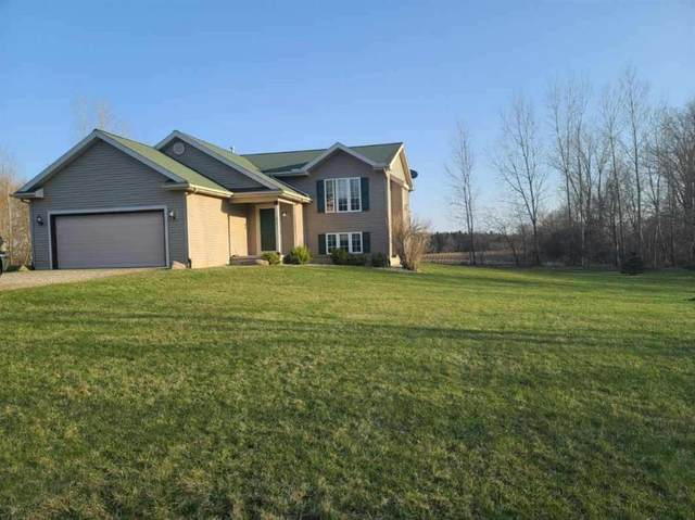5751 Oakview Trail, SANDSTONE CHARTER, MI 49201 (#55202100849) :: Real Estate For A CAUSE