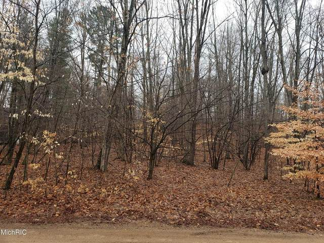 4683 E Deer Cove Road, Eden Twp, MI 49405 (MLS #67021011478) :: The John Wentworth Group