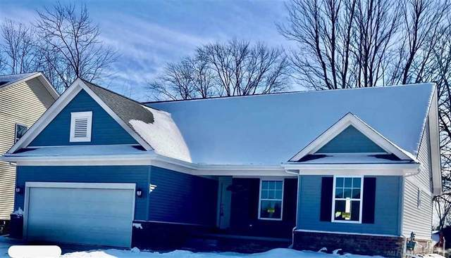 26242 Pine Gate Dr, Chesterfield Twp, MI 48051 (#58050038499) :: Real Estate For A CAUSE