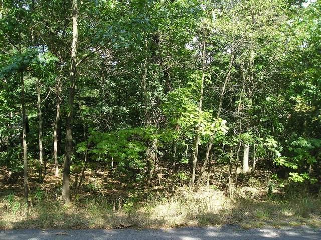19589 Oak Drive, New Buffalo Twp, MI 49117 (#69021011647) :: Robert E Smith Realty