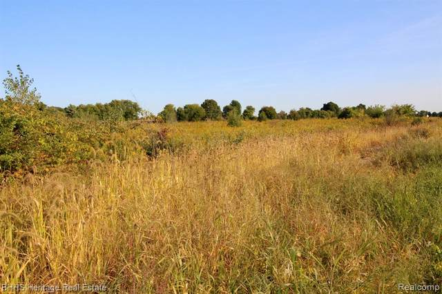 00 Britton Rd, Burns Twp, MI 48418 (#2210024910) :: Real Estate For A CAUSE