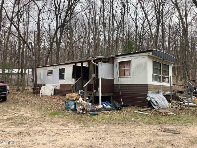 8073 W 10 1/2 Mile Road, Elk Twp, MI 49644 (#67021011954) :: The Alex Nugent Team | Real Estate One