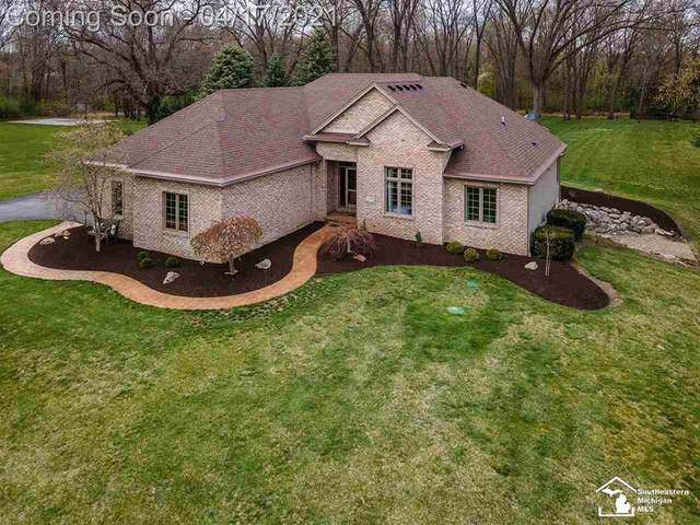 13288 Todd, Ida Twp, MI 48140 (#57050038912) :: Real Estate For A CAUSE