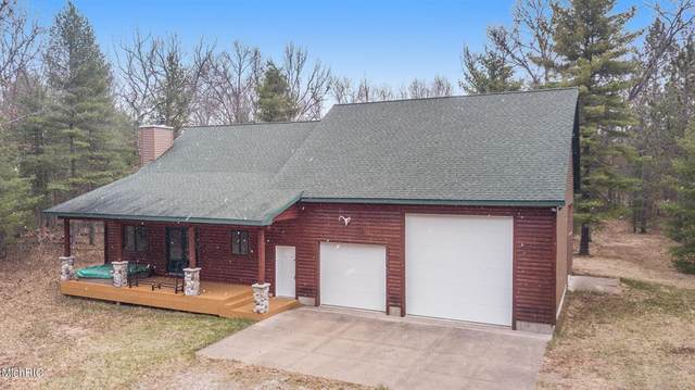 21782 12 Mile Road, Norman Twp, MI 49689 (#65021012297) :: Real Estate For A CAUSE