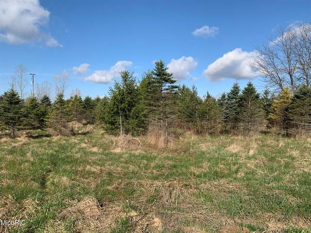 N Shaytown Road, Sunfield Twp, MI 48890 (#65021012334) :: Real Estate For A CAUSE