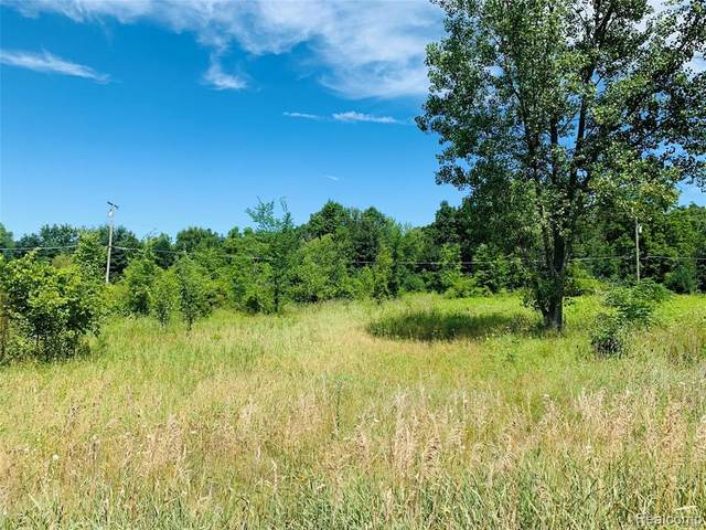 0000 Warner 2B Road, Howell Twp, MI 48855 (#2210025984) :: Real Estate For A CAUSE