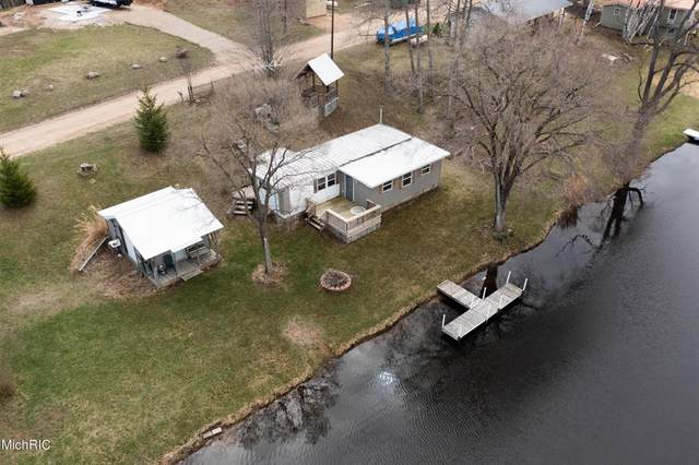 17789 Lost Lake Road, Martiny Twp, MI 49305 (#65021012380) :: Robert E Smith Realty