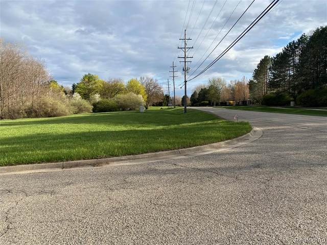 57900 Mound Road, Washington Twp, MI 48094 (#2210026117) :: RE/MAX Nexus