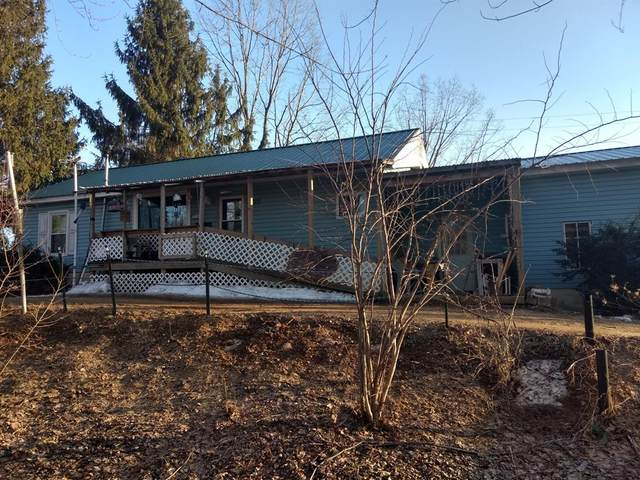 3556 104th Avenue, Trowbridge Twp, MI 49010 (#65021012527) :: Robert E Smith Realty