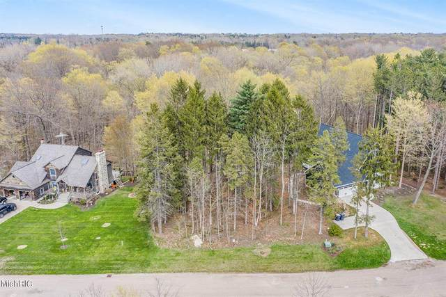 13643 Deer Creek Drive, South Haven Twp, MI 49090 (#69021012538) :: Real Estate For A CAUSE