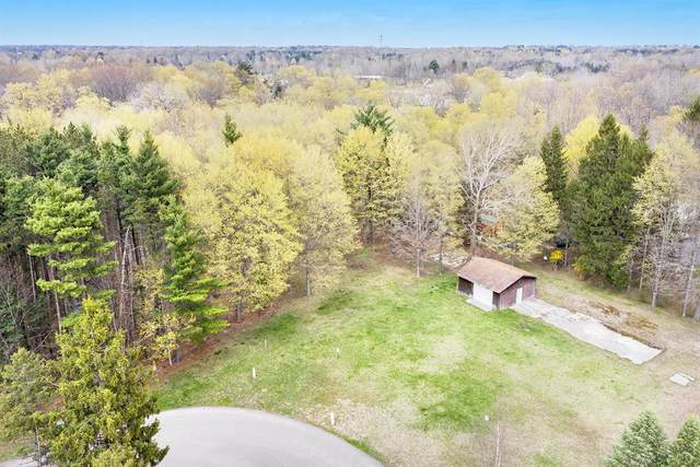 13841 Deer Creek Drive, South Haven Twp, MI 49090 (#69021012544) :: Real Estate For A CAUSE