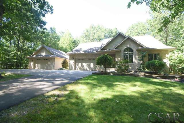 14152 Burt Rd, Brant Twp, MI 48616 (#60050039134) :: Real Estate For A CAUSE
