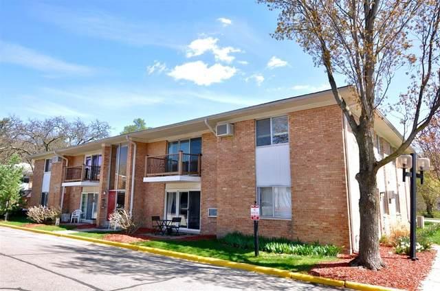 1201 Island Drive #204, Ann Arbor, MI 48105 (#543280063) :: Real Estate For A CAUSE