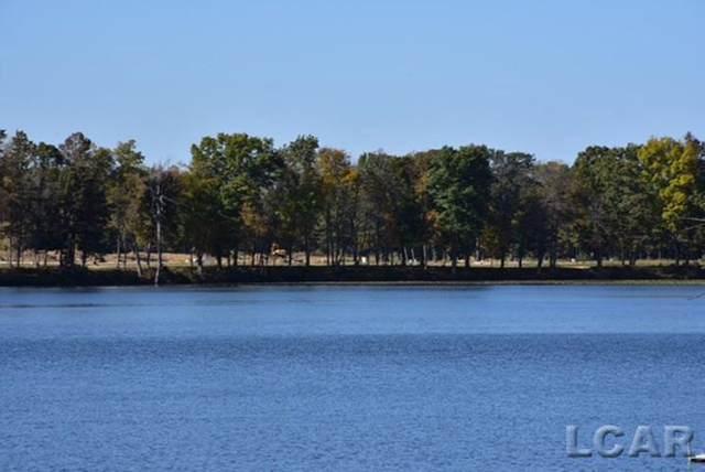 739 Eagle View Way, Tecumseh, MI 49286 (#56050039169) :: The Alex Nugent Team | Real Estate One