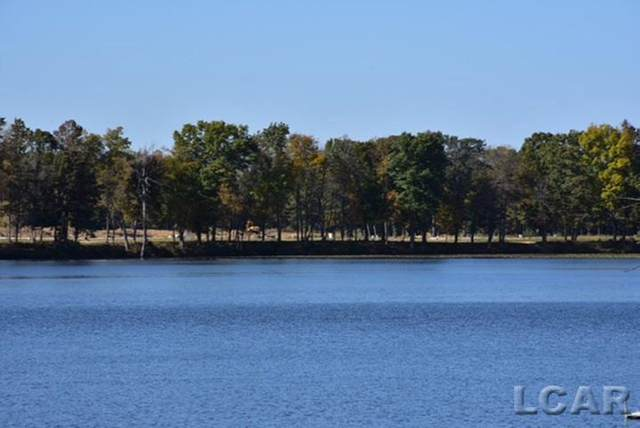 746 Lone Oak Way, Tecumseh, MI 49286 (#56050039171) :: The Alex Nugent Team | Real Estate One