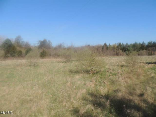 Blue Star Highway, Ganges Twp, MI 49408 (#71021013027) :: Robert E Smith Realty