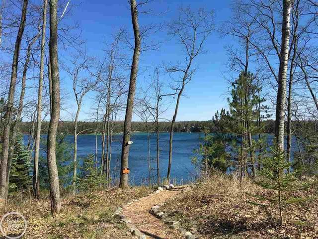 0 Honey Ln, Charlton Twp, MI 49751 (#58050039334) :: Real Estate For A CAUSE