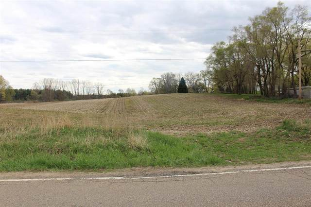 0 Greenwood #E, Grass Lake Twp, MI 49240 (#543280264) :: Real Estate For A CAUSE