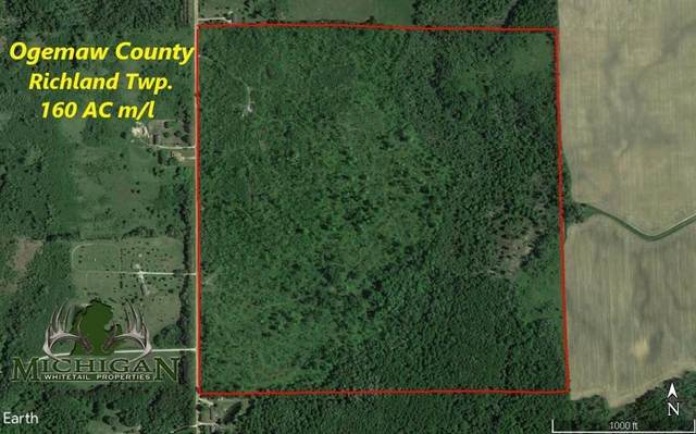 0 VL Cranberry Lake Rd, Richland Twp, MI 48756 (#53021013147) :: Real Estate For A CAUSE