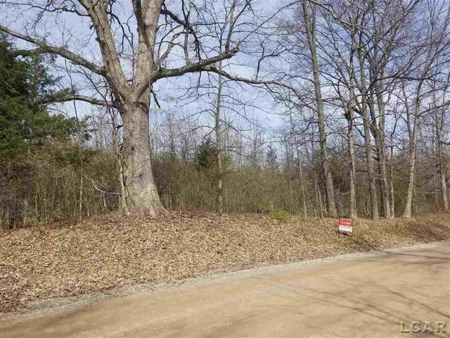 Sharon Hollow Rd., Manchester Twp, MI 48158 (#56050039437) :: RE/MAX Nexus