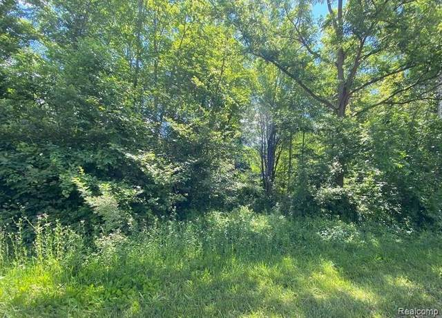 39716 Judd Road, Sumpter Twp, MI 48111 (#2210027873) :: Real Estate For A CAUSE