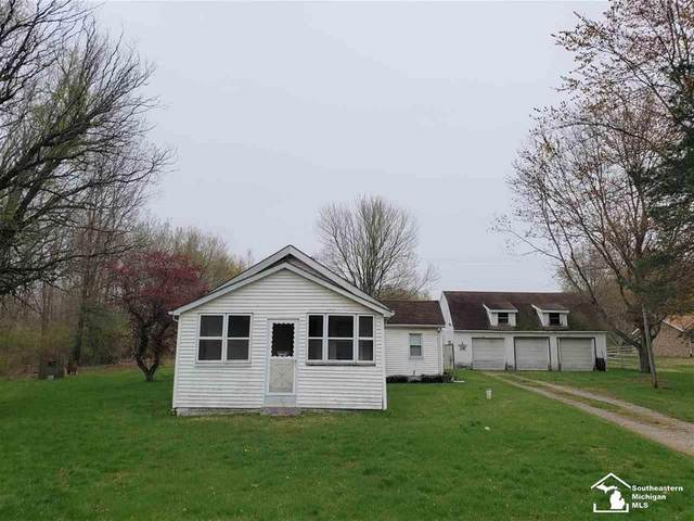 16445 Ida Center, Summerfield Twp, MI 49270 (#57050039473) :: Novak & Associates