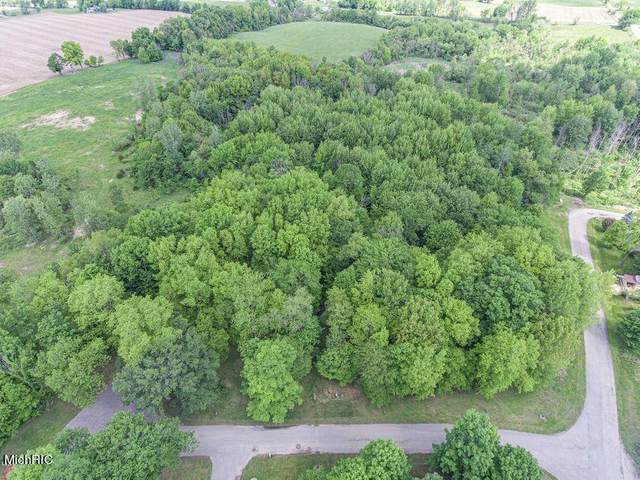 Lot 3/4 Vanhorn Ct., Allegan Twp, MI 49010 (#65021013342) :: Keller Williams West Bloomfield
