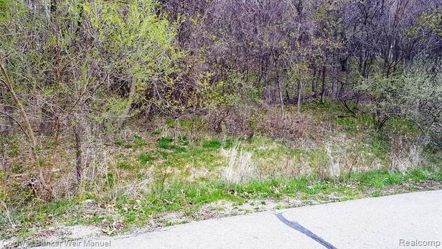 9240 Sunset, Springfield Twp, MI 48348 (#2210028084) :: RE/MAX Nexus