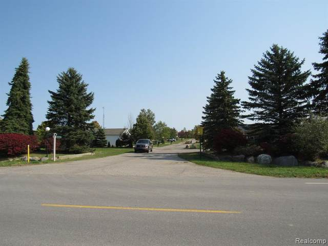 Lot 47 Maple Valley, Brown City, MI 48416 (#2210028233) :: Real Estate For A CAUSE