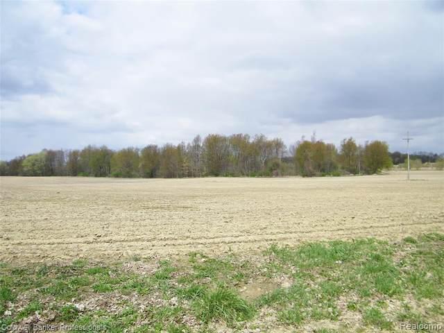 20 acres Falkenbury Road, Deerfield Twp, MI 48461 (#2210028303) :: RE/MAX Nexus