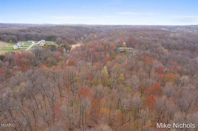 Sugar Creek Lot 36, Irving Twp, MI 49333 (#65021013606) :: Real Estate For A CAUSE