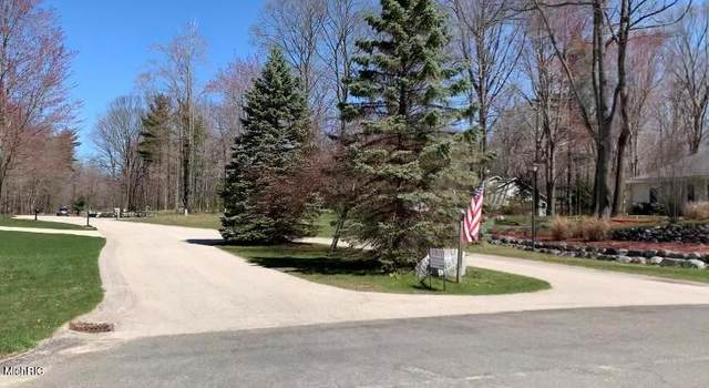 Ridgeview Court, Hamlin Twp, MI 49431 (#67021013619) :: Real Estate For A CAUSE