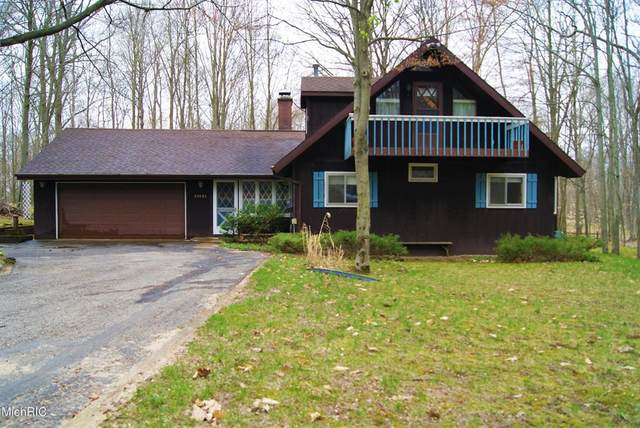 10121 Mountain View Trail, Austin Twp, MI 49346 (#72021013844) :: Real Estate For A CAUSE