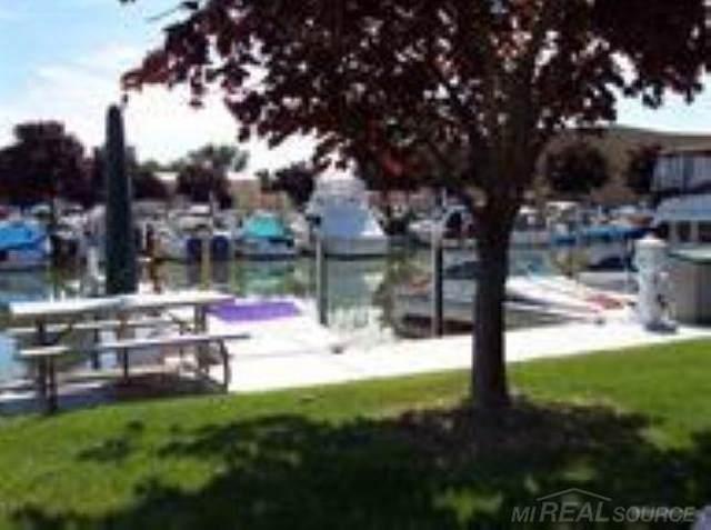 206 Joss Wharf, Harrison Twp, MI 48045 (#58050039823) :: The Alex Nugent Team | Real Estate One