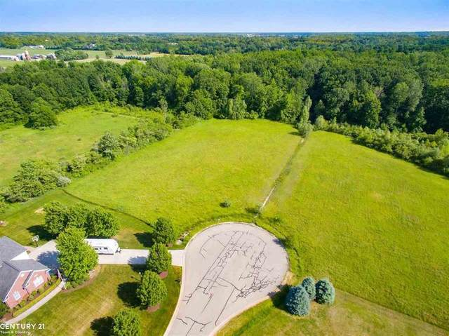 75354 Sanctuary Dr, Bruce Twp, MI 48065 (#58050040022) :: Real Estate For A CAUSE