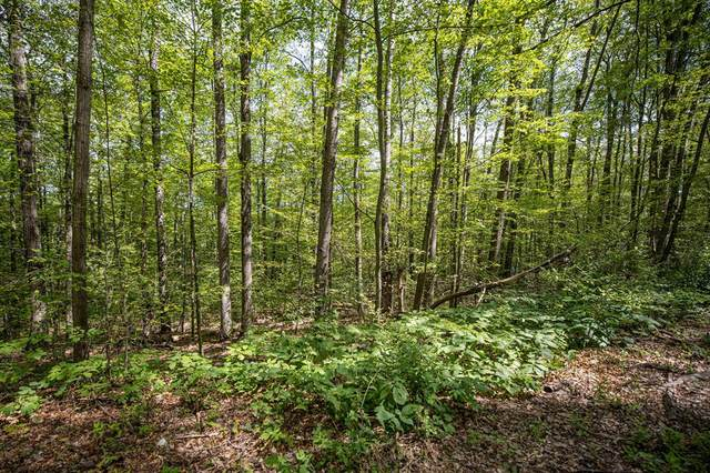 Lot 34 Forest Lake Drive, Big Rapids Twp, MI 49307 (#72021014354) :: Real Estate For A CAUSE