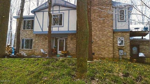 6625 S Charlton Park Road, Baltimore Twp, MI 49058 (#66021014504) :: RE/MAX Nexus