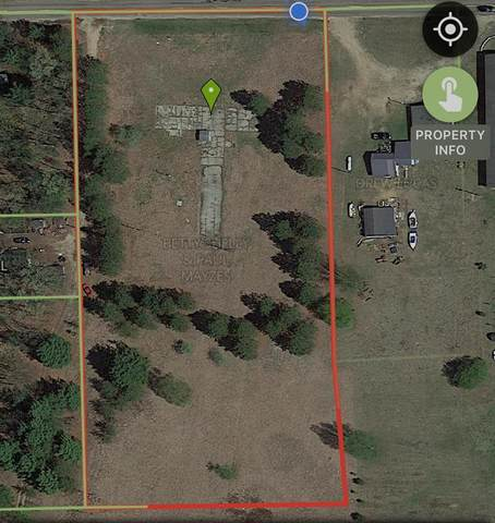 7093 W 5 Mile Road, Sauble Twp, MI 49644 (#67021014533) :: Real Estate For A CAUSE