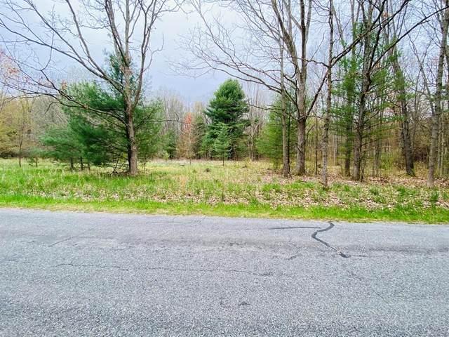 23223 W Wood Lake Road, Pierson Twp, MI 49339 (#65021014577) :: Novak & Associates