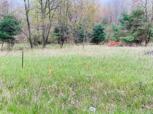 23279 W Wood Lake Drive, Pierson Twp, MI 49339 (#65021014579) :: Real Estate For A CAUSE