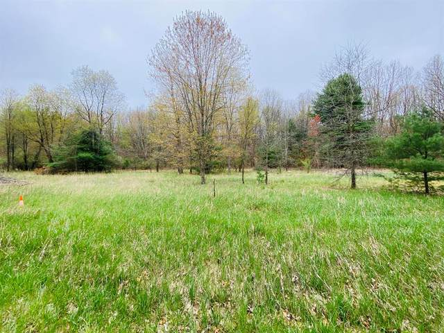 23251 W Wood Lake Drive, Pierson Twp, MI 49339 (#65021014578) :: Real Estate For A CAUSE