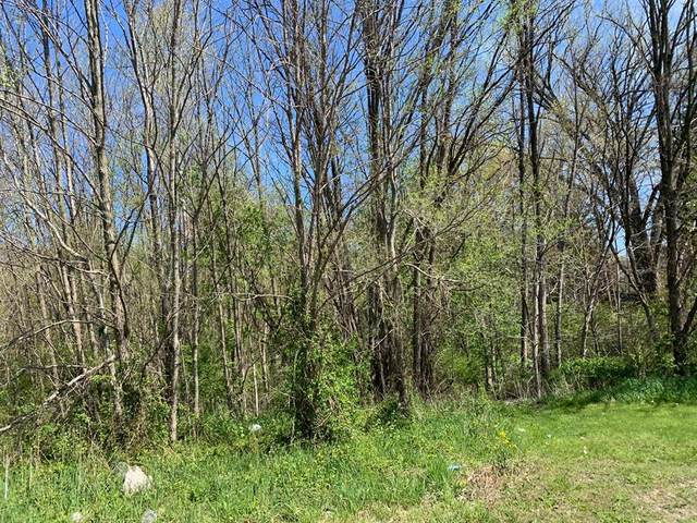 0 Sawyer Road, Chikaming Twp, MI 49125 (#69021014800) :: Real Estate For A CAUSE