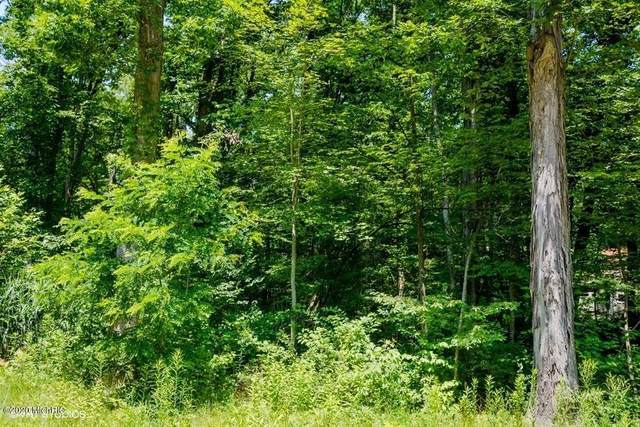 25 National Parkway, Chikaming Twp, MI 49129 (#69021014806) :: Real Estate For A CAUSE