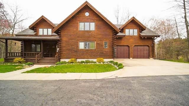 1250 18 Mile Road, Fork Twp, MI 49305 (#71021014820) :: Novak & Associates