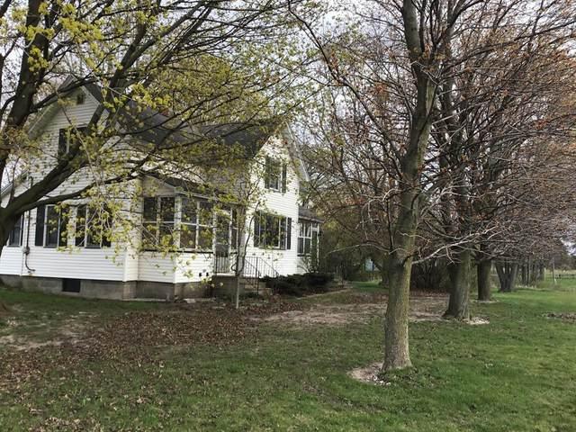 6960 S Maple Island Road, Sheridan Twp - Newaygo, MI 49425 (#67021014953) :: Novak & Associates