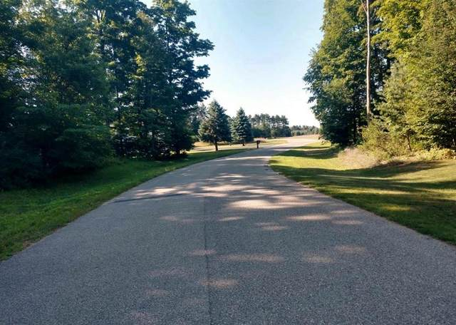 000 Lipp Farm Road, Benzonia Twp, MI 49616 (#67021014968) :: Novak & Associates