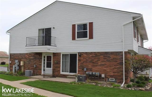 31064 Richert, Fraser, MI 48026 (#58050040537) :: Real Estate For A CAUSE